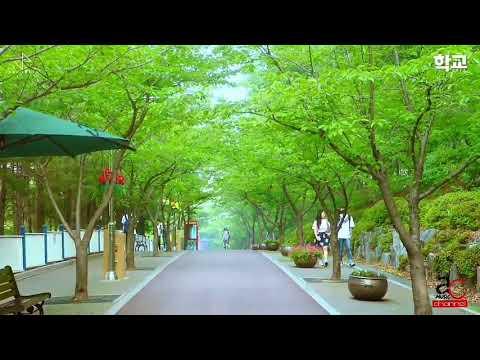 Dil  Tera  Mera  Dil  Hd Video Song Korean Mixed By Alka Yaganik & Sonu Nigam