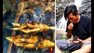 Survival Skills Indonesia | Berburu dan memasak ikan air tawar (ikan mas) di sungai.
