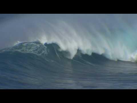 Jaws Maui Redux