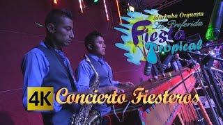 Fiesta Tropical - Concierto Fiesteros / Calidad 4K