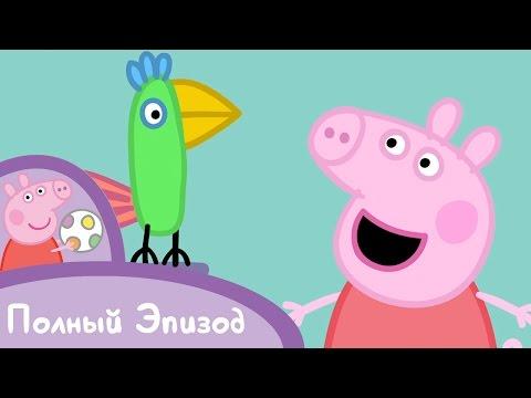 Свинка Пеппа - S01 E04 Попугай Полли (Серия целиком)