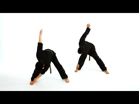 How to Do Basic Standing Stretches | Taekwondo Training Image 1