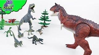 Dinosaur fight ! Carnotaurus jurassic world toys for kids trex battle for kids