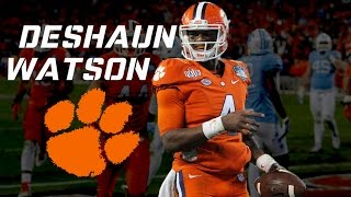 Deshaun Watson 2016 Highlights HD