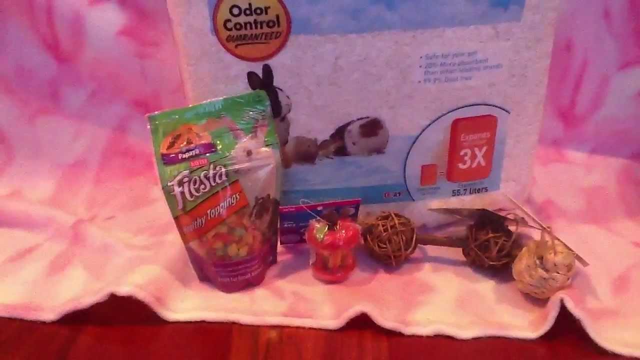 Petsmart Hamster Tubes Mini Petsmart Hamster Haul