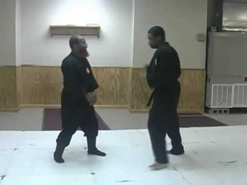 Kedikudaki Destroying a Kick  Ninjutsu Techniques Image 1