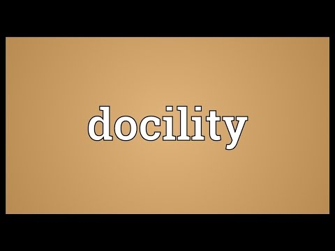 Header of docility
