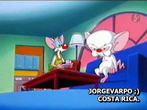 Pinky Elmyra Y Cerebro- La Casa De Ensueño De Pinky video