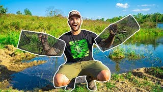 Using MINNOW TRAPS in My BACKYARD POND!!! (Surprising Result!)