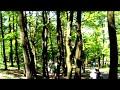 Polish 4X Open - Rybnik - Mały finał