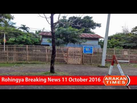 Rohingya Breaking News 11 October 2016 ( 12 ) #Rohingya_Under_attack