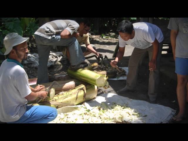 Merapi Project