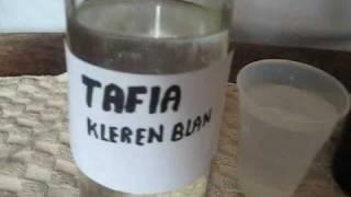 Obama Dissed Preval In Trinidad Preval Pawol Tafia