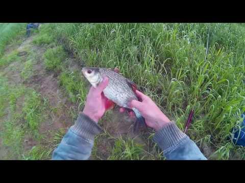 рыбалка на майские на оке