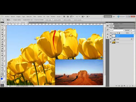 10 | Herramientas de selección Marco || Curso Adobe Photoshop CS5/CS6/CC