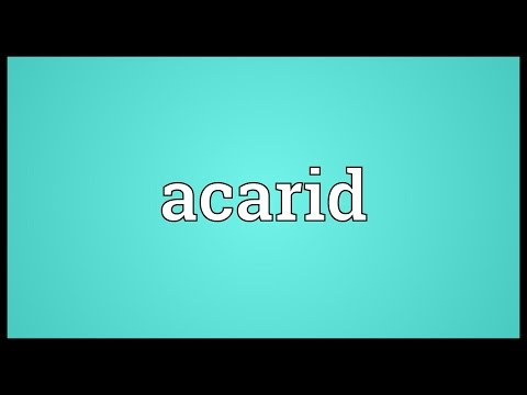 Header of acarid