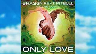 Shaggy - Only love feat Pitbull & Gene Noble
