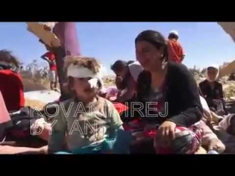 Iraq, Sinjar: displaced Yazidis, women and children, persecuted by Daesh [ISIS]