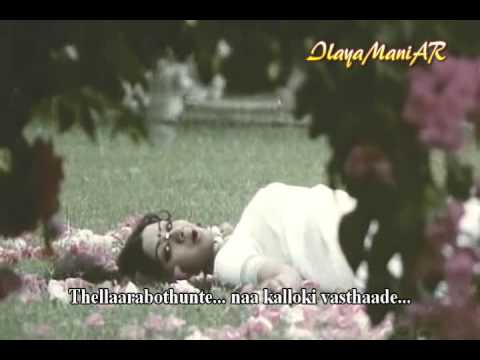 Sirimalle Puvva - Padaharella Vayasu [with Lyrics] - Sridevi | Ilayaraja | S.janaki video