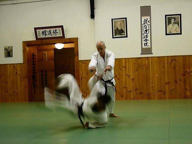 Aikido Shudokan | Godan (5th Dan) test