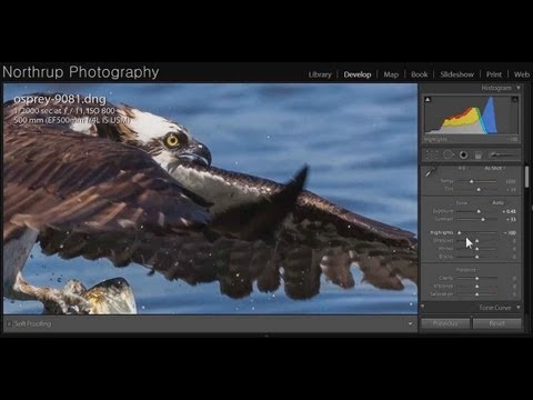 Adobe Lightroom Overview: Picture Post-Processing for Photographers