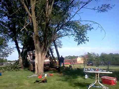 Hillbilly tree service