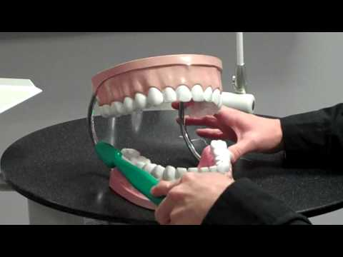 Howto: Brush and Floss Properly