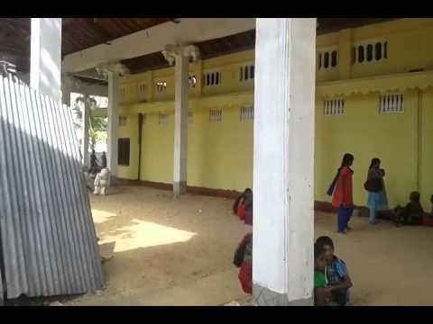 8.10.2014 Sri Lanka Jaffna District Vallipuram Bird Kavadi