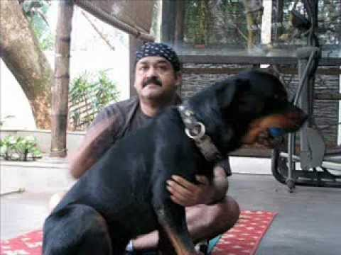 Mohanlal With His Pet Dog Youtube