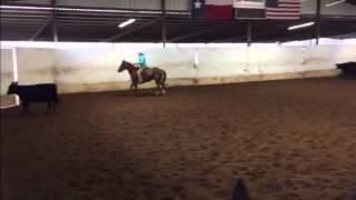 Cooper- Jared Lesh Cowhorses