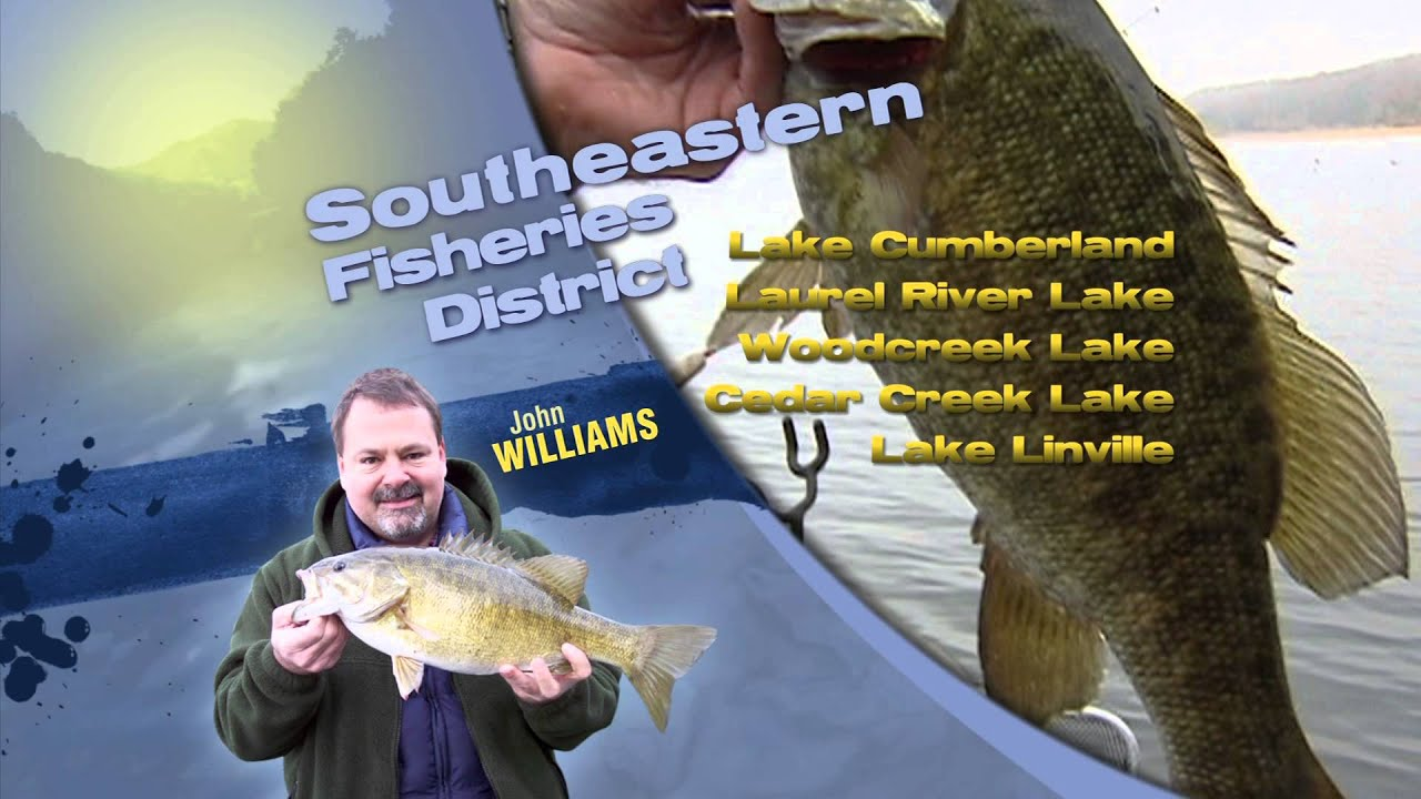 Fishing report in kentucky for late september youtube for Kentucky out of state fishing license