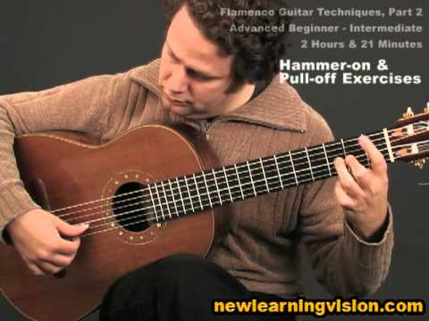 Flamenco Guitar Techniques (Part 2) by Adam del Monte (Advanced Beginner - Intermediate)