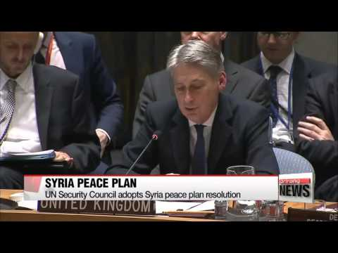 UN Security Council adopts Syria peace plan resolution