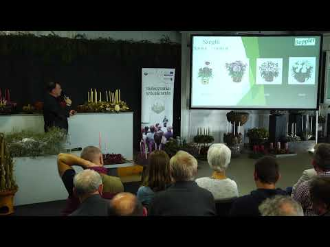 Kertészeti szeminárium 2019. november 19. Változások a technológiákba 8.