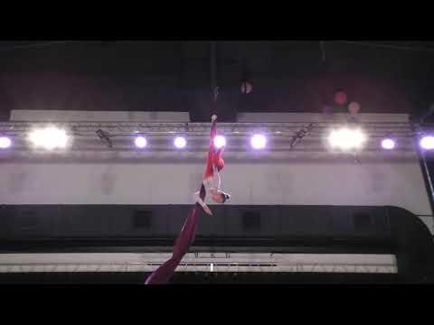 Арина Калгина - Catwalk Dance Fest [pole dance, aerial]  30.04.18.
