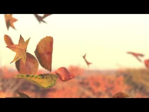 Chihei Hatakeyama - Sound of Air