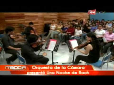 Orquesta de la cámara presentó una noche de bach