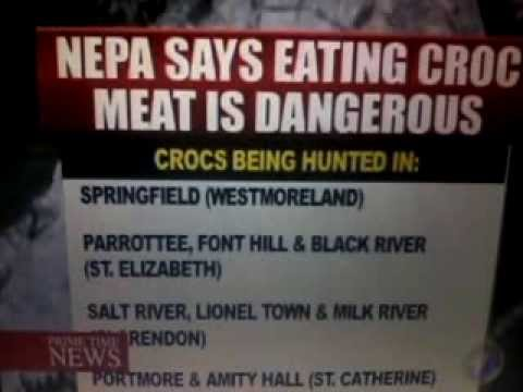 CROCODILE MEAT CONCERN IN (JAMAICA) HEALTH ISSUE'S FOR CONSUMERS