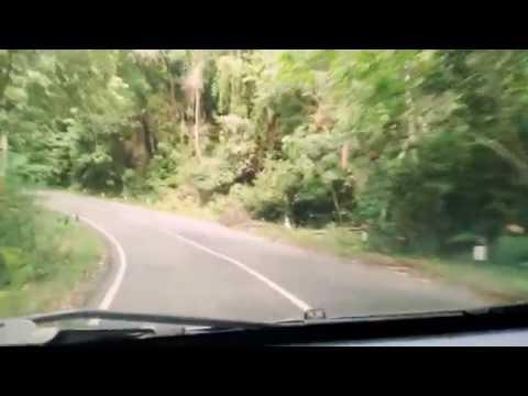 Wisata Perjalanan di Hutan Lindung Bukit Barisan - Kab. Pesisir Barat, Lampung