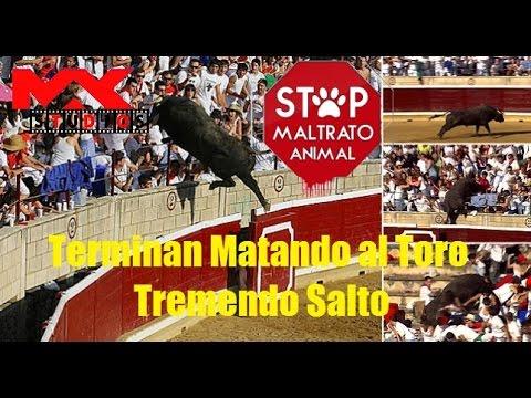 Terminan Matando al Toro | Tremendo Salto | Concurso Recortadores