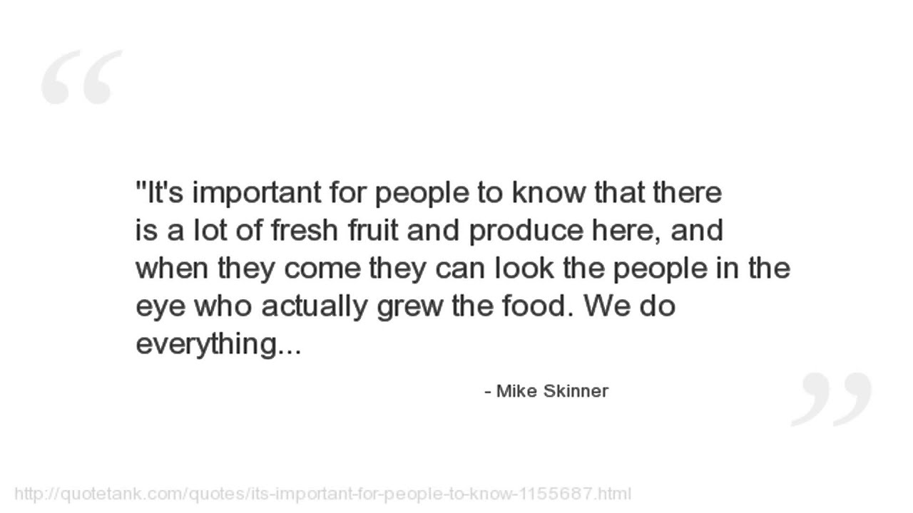 Mike Skinner The Streets Mike Skinner Quotes