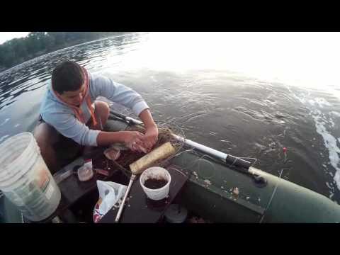 лещ на бортовую удочку на реке видео