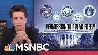 No Nazi Scumbags Allowed In The US Military | Rachel Maddow | MSNBC