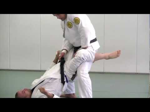Open Guard from Standing - BJJ Blue Belt Requirements Technique #6 Image 1