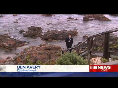 Port Lincoln Sharks | 9 News Adelaide