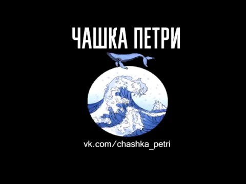 mewithoutYou (live @ Plavuchiy Dock, Murmansk, Russia, Feb 17, 2016)