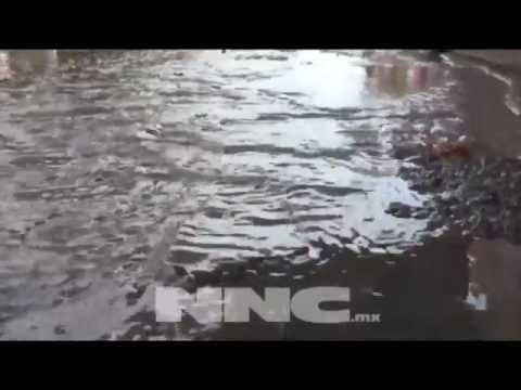 Invade excremento calles de Tepic; acusan vecinos negligencia de alcaldía