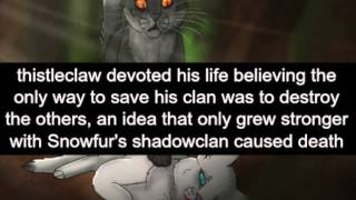Warrior Cat Fun Facts!