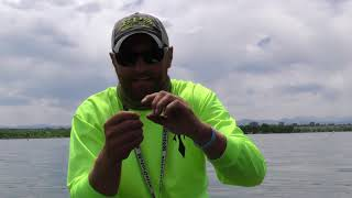 Summer Time Walleye Fishing Tactics To Catch More Fish