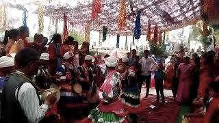 कुमाऊनी शादी में मनमोहक छोलिया नृत्य अलई(बाड़ेछिना)